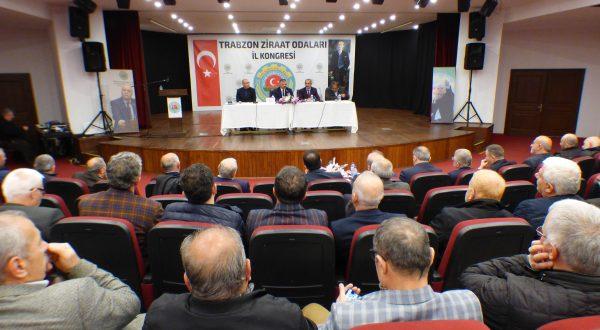 Trabzon Ziraat Odaları Çiftçi Eğitimini Birinci Sıraya Aldı